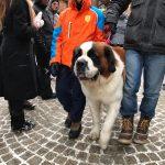Cervinia St Bernard parade